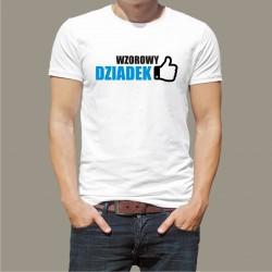 Koszulka - Wzorowy Dziadek